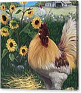 Rooster One Eyed Jack Canvas Print