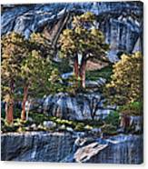 Rooted In Solid Rock Canvas Print