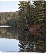 Rope Swing On Bear Creek Lake Canvas Print