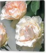 Rose 125 Canvas Print