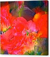 Rose 144 Canvas Print