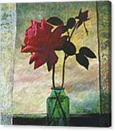Rose And Rosebud Canvas Print
