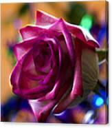 Rose Celebration Canvas Print