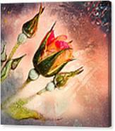 Rose Creation Canvas Print