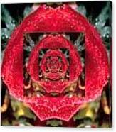 Rose Cut Canvas Print