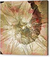 Rose Petal Highway Canvas Print