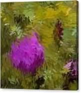 Rose Pond Canvas Print