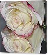 Rose Reflection Canvas Print