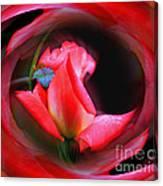 Rosebud Energies Canvas Print