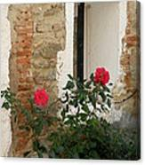 Roses And Antiquity  Canvas Print
