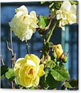 Roses At The Shore Canvas Print