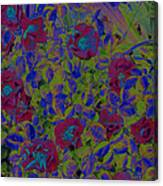 Roses By Jrr Canvas Print