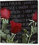 Roses Glow Against The Black Granite Canvas Print