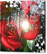 Rosesredred Canvas Print