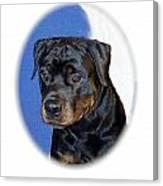 Rottweiler 1437 Canvas Print