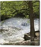 Rouge River At Fair Lane Canvas Print