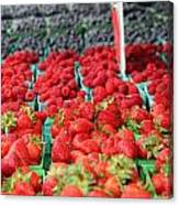 Rows Of Berries At Market Canvas Print