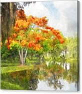 Royal Poinciana Lake Canvas Print