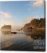 Ruby Beach At Low Tide Canvas Print