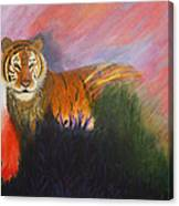 Ruler Of The Sunderban Canvas Print
