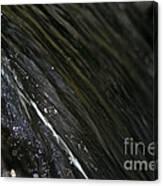 Running Ribbon Water Canvas Print