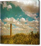 Rural Barbed Wire Fence Canvas Print