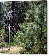 Rural Crossing Canvas Print