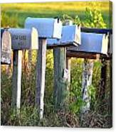 Rural Mail Boxes In Color Canvas Print