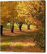 Rural Scene In Autumn Canvas Print