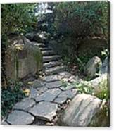 Rural Steps Canvas Print