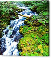 Rushing Mountain Stream Canvas Print