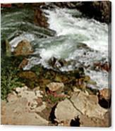 Rushing Water Glen Alpine Creek  Canvas Print