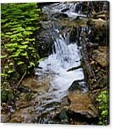 Rushing Water On Mt Spokane Canvas Print