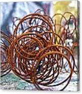 Rusted Spring 1 Canvas Print