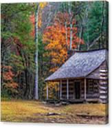 Rustic Colors Canvas Print