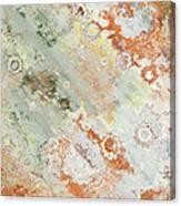 Rustic Impression Canvas Print