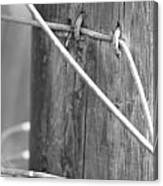Rustic Wire Canvas Print