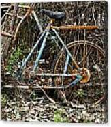 Rusty Wheel Of Bicycle Canvas Print