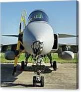 Saab Jas39d Gripen Canvas Print