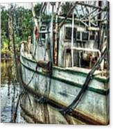 Safe Harbor Lil Arthur Canvas Print