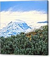 Sage Mountain Canvas Print