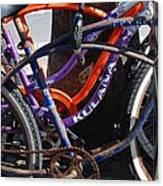 Saggy Chain Canvas Print