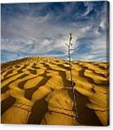 Sahara Desert, Tunisia, Africa Canvas Print