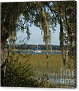 Sailboat And Moss Canvas Print
