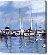 Sailboats And Seagulls Canvas Print