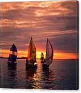 Sailing Yachts Canvas Print