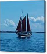 Sails Off The San Juans Canvas Print
