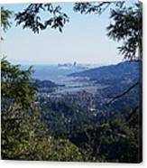 San Francisco As Seen Through The Redwoods On Mt Tamalpais Canvas Print