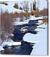San Juan River At At Last Ranch Canvas Print