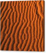 Sand Maze Canvas Print
